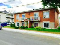 Quadruplex - à vendre - Saint-Vincent-de-Paul - 23100485