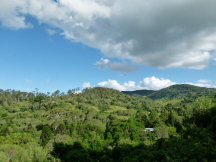Beautiful location in fertile valley with fabulous country views. The Palms Gympie Area Preview