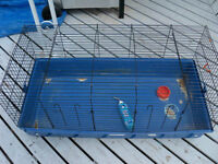 Large rabbit or guinea pig cage with accessories for sale