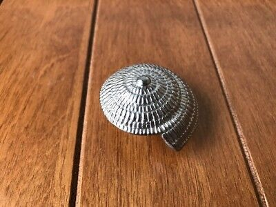 (Sonoma Cabinet Hardware Nautical Sea Shell Sundial Seashell Knob NIckel Handle)