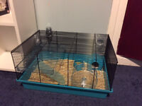Beautiful blue/grey dwarf hamster FREE to a loving home - comes with all belongings, food + bedding