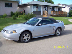2004 Ford Mustang 40th Anniversary Edition Convertible