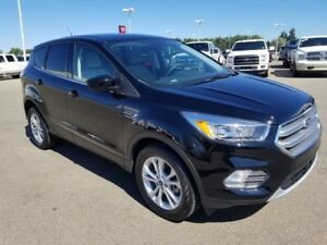 2017 Ford Escape SE (Heated Seats, Backup Camera, Ecoboost)