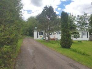 20 McNulty Ave. Lakeville, NB E1H 1H2