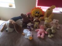 A collection of 12 Soft Toys in used but good washed clean condition