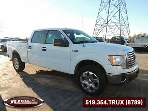 2010 Ford F150