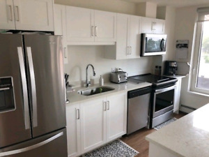 1 Bedroom Apartment for Sublet: Downtown Halifax