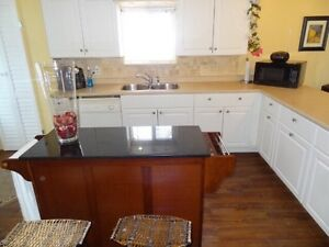 Kitchen Cabinets and countertops - great shape Sarnia Sarnia Area image 2