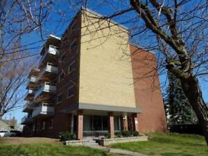 close to brock university/pencenter,two bedrooms condo apartment