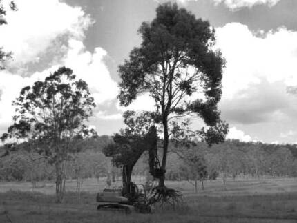TREES TO CLEAR ? ROADWORKS , POWER LINE EASEMENTS ? Grafton Clarence Valley Preview