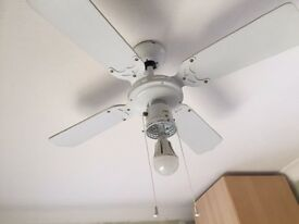 Light and Ceiling Fan