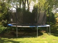 Top Quality Trampoline with Enclosure - Adult weight quality 12 foot bed.