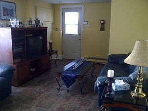 Large  1 Queen bedroom Apt - 2 Level WIFI - Sofabed  - Satellite