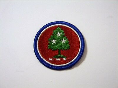 Tennessee State Guard (TENNESSEE STATE NATIONAL GUARD FULL COLOR PATCH)