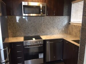 1 bedroom($1245.00) and 1  bachelor  downtown Ottawa only 2 left