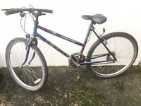 FREE Ladies Raleigh Amazon bicycle