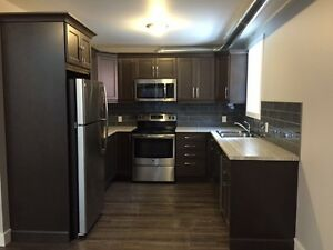 Downtown Sarnia~ 2 bedroom loft style apartment ~ Brand New