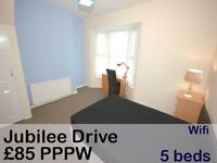 *** Free beer*** :) 5 bed shared/student house to let, JUBILEE DRIVE, L7