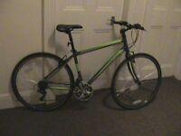 Adult male bike new