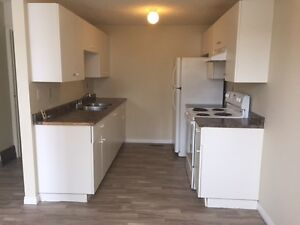 Townhouse in Clareview Village NE - 3 Bedroom Townhome for Rent