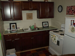 1 bedroom suite in Lakeview for rent utilities/internet included