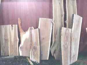 BEAUTIFUL LIVE EDGE!!! VARIETY OF SPECIES! London Ontario image 10