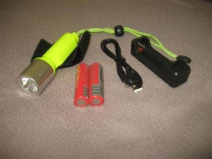 SCUBA dive torch Albany 6330 Albany Area Preview