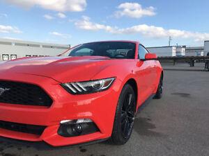 FSOT 15 Ford Mustang Ecoboost Premium/Performance PKG/NAV/Shaker