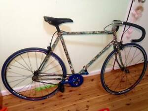 Single Speed, classic frame Dulwich Hill Marrickville Area Preview