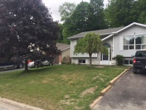 Midland, lower level 2 bedroom ready for July 1