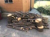 Logs available for free