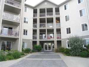 2 bedrooms, 2 full bathrooms and 2 Parking Stalls Condo for Rent