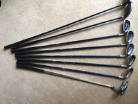 Golf clubs -RAM XR Demon Ladies design Right hand starter set graphite shaft Urmston Manchester