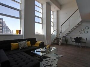 Luxury Forest Hill 2-Storey Loft Condo Imperial Plaza 2 Bath