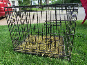 Urgent - Small dog crate for Sale