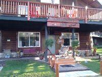 Log Inn for Sale