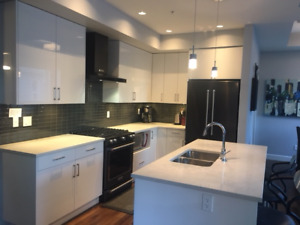 Sunny 2 bed, 2 bath fully furnished condo - August 1st