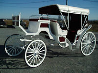 wedding carriages NEW