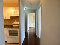 PENTHOUSE 2 BED 2 WASH GOOD FOR INVESTMENT $259000
