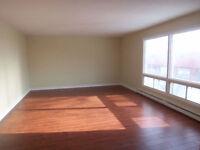 Spacious 3 Bedroom Apt - Private Entrance & Laundry