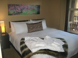 Luxury Canmore Condo Feb 9-16