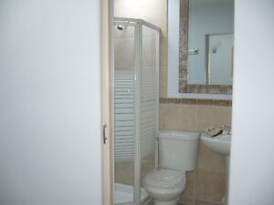 Bathroom Repairs Prince George British Columbia image 3