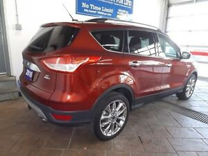 2016 Ford Escape SE Kitchener / Waterloo Kitchener Area image 3