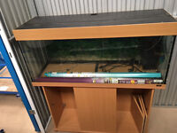 """Fish Or Reptile tank 48"""" x 16"""" x 16"""" including cabinet"""