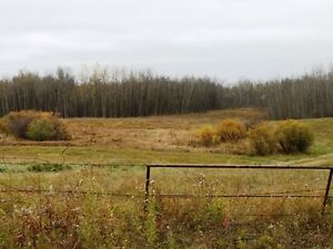 Private corner 3.88 acres available in Beaver County Strathcona County Edmonton Area image 4