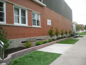 Artificial Turf-Never Cut, Water or Weed Your Lawn Again! Sarnia Sarnia Area image 7