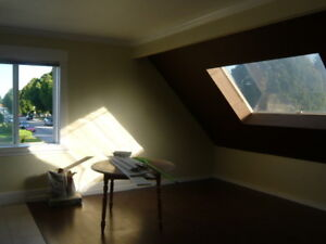 Spacious and bright 2+ bedroom loft in house -with mountain view