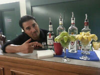 Are you looking for PROFESSIONAL, LICENSED BARTENDERS?