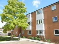 SPACIOUS 2 BEDROOM APARTMENT- CB1