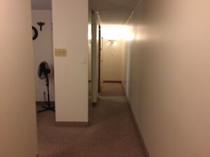 apartments for rent $815